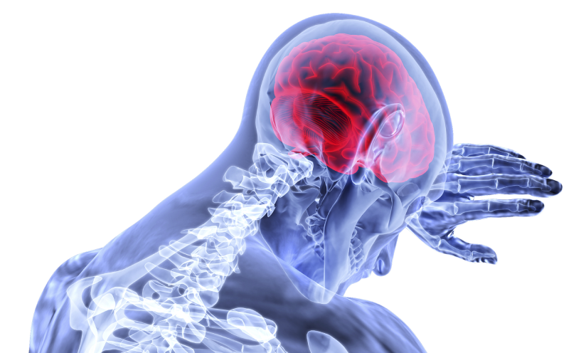 braininflammation
