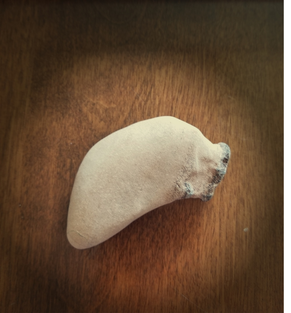 liver rock spotlight