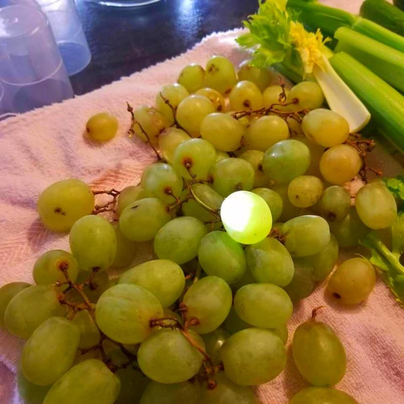 shining grape red.jpg